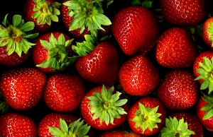 temporada fresas